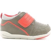 Παπούτσια Παιδί Χαμηλά Sneakers Chicco 01056498000000 καφέ