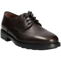 Παπούτσια Άνδρας Derby Maritan G 111333 καφέ