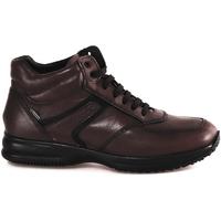Παπούτσια Άνδρας Ψηλά Sneakers IgI&CO 2120911 καφέ