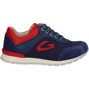 Παπούτσια Παιδί Χαμηλά Sneakers Alberto Guardiani GK23301 Μπλε