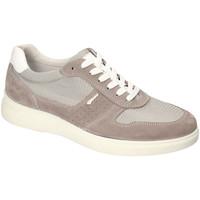 Παπούτσια Άνδρας Χαμηλά Sneakers IgI&CO 3120122 Οι υπολοιποι