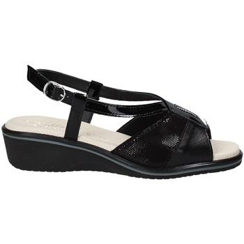 Παπούτσια Γυναίκα Σανδάλια / Πέδιλα Susimoda 270414-01 Μαύρος