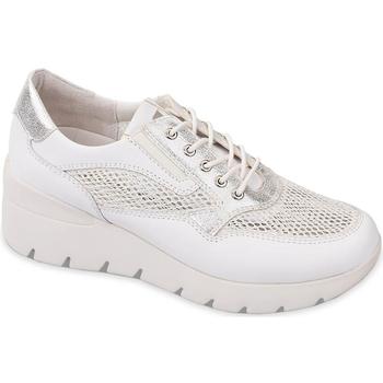 Παπούτσια Γυναίκα Χαμηλά Sneakers Valleverde 18252 λευκό