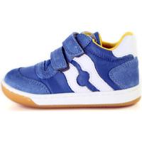 Παπούτσια Παιδί Χαμηλά Sneakers Falcotto 2014156 01 Μπλε