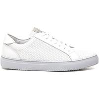 Παπούτσια Άνδρας Χαμηλά Sneakers Stonefly 211289 λευκό