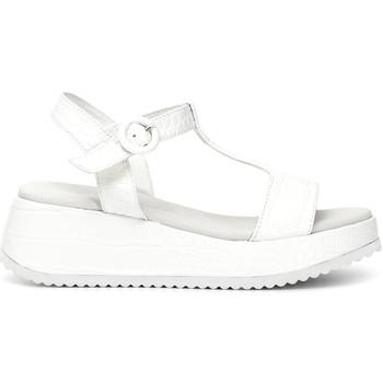 Παπούτσια Γυναίκα Σανδάλια / Πέδιλα Café Noir HB950 λευκό