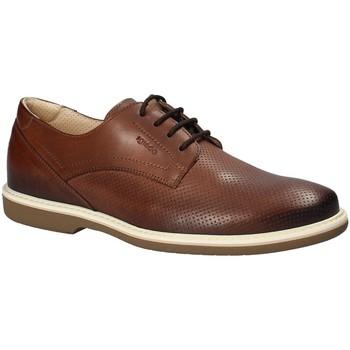 Παπούτσια Άνδρας Derby IgI&CO 1107622 καφέ