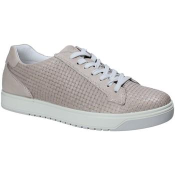 Παπούτσια Άνδρας Χαμηλά Sneakers IgI&CO 1125 Γκρί