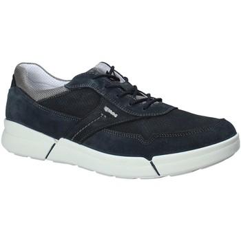 Παπούτσια Άνδρας Χαμηλά Sneakers IgI&CO 1126 Μπλε
