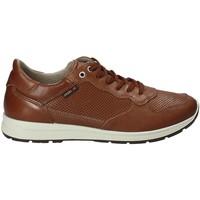 Παπούτσια Άνδρας Χαμηλά Sneakers Enval 1211422 καφέ