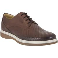 Παπούτσια Άνδρας Derby IgI&CO 1107 καφέ