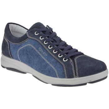 Παπούτσια Άνδρας Χαμηλά Sneakers IgI&CO 1113 Μπλε