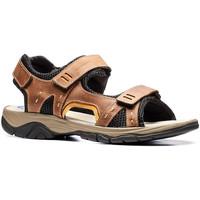 Παπούτσια Άνδρας Σανδάλια / Πέδιλα Stonefly 108692 καφέ