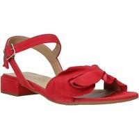 Παπούτσια Γυναίκα Σανδάλια / Πέδιλα IgI&CO 5188433 το κόκκινο