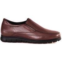 Παπούτσια Άνδρας Μοκασσίνια Soldini 20366 P καφέ