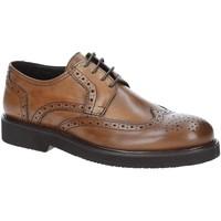 Παπούτσια Άνδρας Derby Exton 5446 καφέ