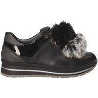 Παπούτσια Γυναίκα Χαμηλά Sneakers Grunland SC3944 Μαύρος