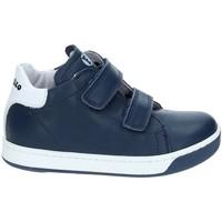 Παπούτσια Παιδί Χαμηλά Sneakers Falcotto 2012363-01-9104 Μπλε