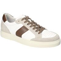 Παπούτσια Άνδρας Χαμηλά Sneakers IgI&CO 3132922 λευκό
