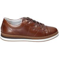 Παπούτσια Άνδρας Χαμηλά Sneakers IgI&CO 3138122 καφέ