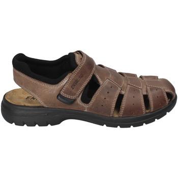 Παπούτσια Άνδρας Σανδάλια / Πέδιλα Enval 3247522 καφέ
