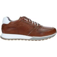 Παπούτσια Άνδρας Χαμηλά Sneakers Rogers 5065 καφέ