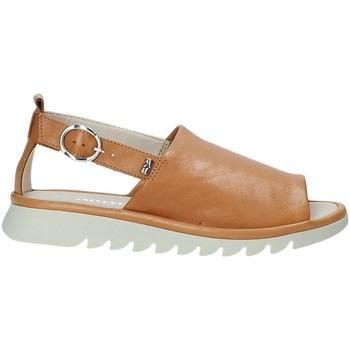 Παπούτσια Γυναίκα Σανδάλια / Πέδιλα Valleverde 41151 καφέ
