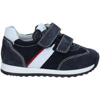 Παπούτσια Παιδί Χαμηλά Sneakers NeroGiardini P923452M Μπλε