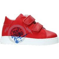 Παπούτσια Παιδί Χαμηλά Sneakers Falcotto 2013622-01-1H02 το κόκκινο