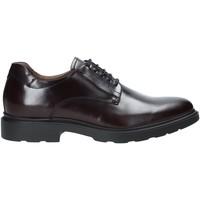 Παπούτσια Άνδρας Derby NeroGiardini A901141U το κόκκινο