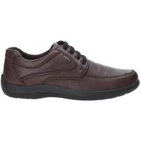 Παπούτσια Άνδρας Χαμηλά Sneakers Enval 4233511 καφέ