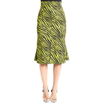 Υφασμάτινα Γυναίκα Φούστες Denny Rose 921DD70009 Πράσινος