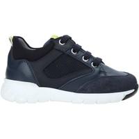 Παπούτσια Παιδί Χαμηλά Sneakers Nero Giardini A923730M Μπλε
