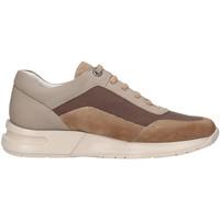 Παπούτσια Άνδρας Χαμηλά Sneakers CallagHan 91311 Μπεζ