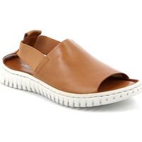 Παπούτσια Γυναίκα Σανδάλια / Πέδιλα Grunland SA2538 καφέ