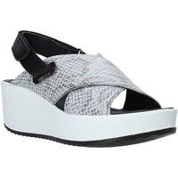 Παπούτσια Γυναίκα Σανδάλια / Πέδιλα IgI&CO 5178400 Μαύρος