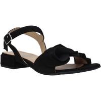 Παπούτσια Γυναίκα Σανδάλια / Πέδιλα IgI&CO 5188400 Μαύρος