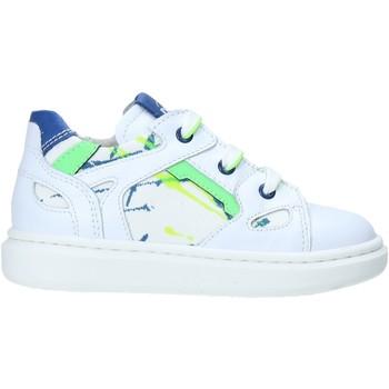 Παπούτσια Παιδί Χαμηλά Sneakers Nero Giardini E023805M λευκό
