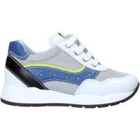 Παπούτσια Παιδί Χαμηλά Sneakers Nero Giardini E023820M λευκό