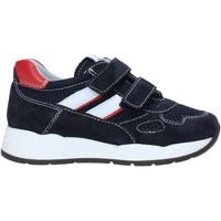 Παπούτσια Παιδί Χαμηλά Sneakers Nero Giardini E023830M Μπλε