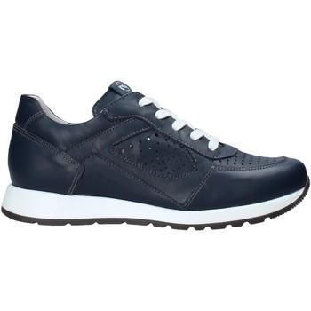 Xαμηλά Sneakers Nero Giardini E033810M