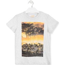 Υφασμάτινα Παιδί T-shirt με κοντά μανίκια Losan 013-1017AL λευκό