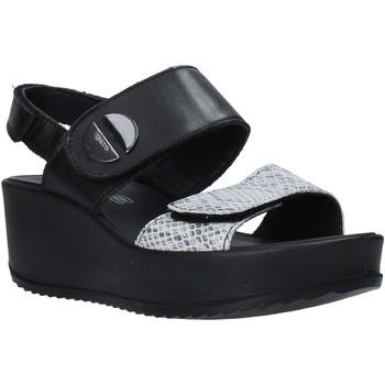 Παπούτσια Γυναίκα Σανδάλια / Πέδιλα IgI&CO 5178200 Μαύρος