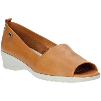 Παπούτσια Γυναίκα Μπαλαρίνες Valleverde 41141 καφέ