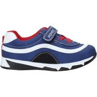 Παπούτσια Παιδί Χαμηλά Sneakers Primigi 5447833 Μπλε