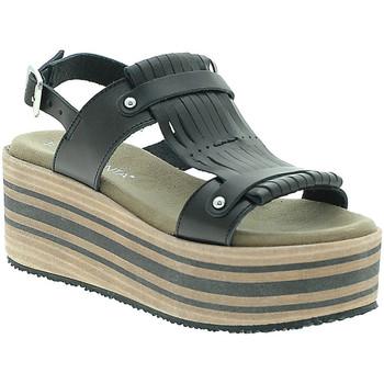 Παπούτσια Γυναίκα Σανδάλια / Πέδιλα Pregunta IBH5804 Μαύρος