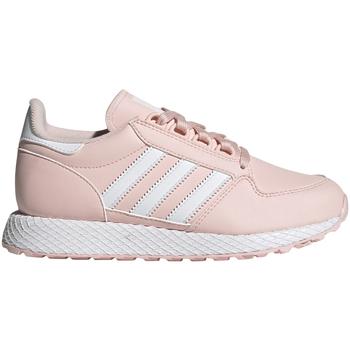 Xαμηλά Sneakers adidas EG8966