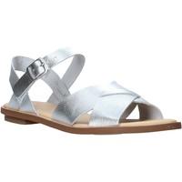 Παπούτσια Γυναίκα Σανδάλια / Πέδιλα Clarks 26139429 Ασήμι