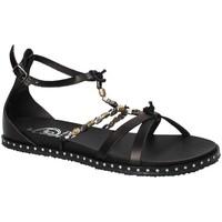 Παπούτσια Γυναίκα Σανδάλια / Πέδιλα 18+ 6140 Μαύρος