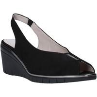Παπούτσια Γυναίκα Σανδάλια / Πέδιλα Comart 4D3415 Μαύρος